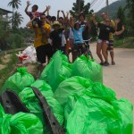 Beach Clean -ups